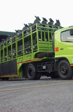 Our Services Motor Carrier armada kmdi 1024x768